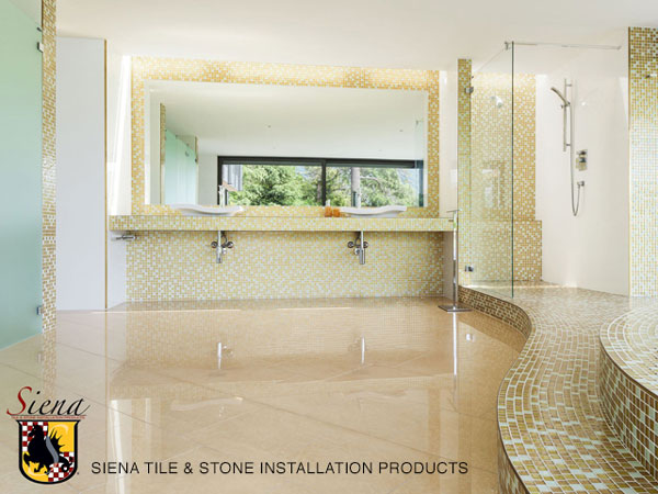 SIENA-Image