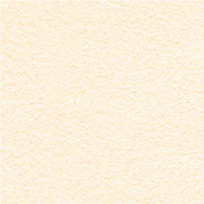 ColorTek 20 Ivory